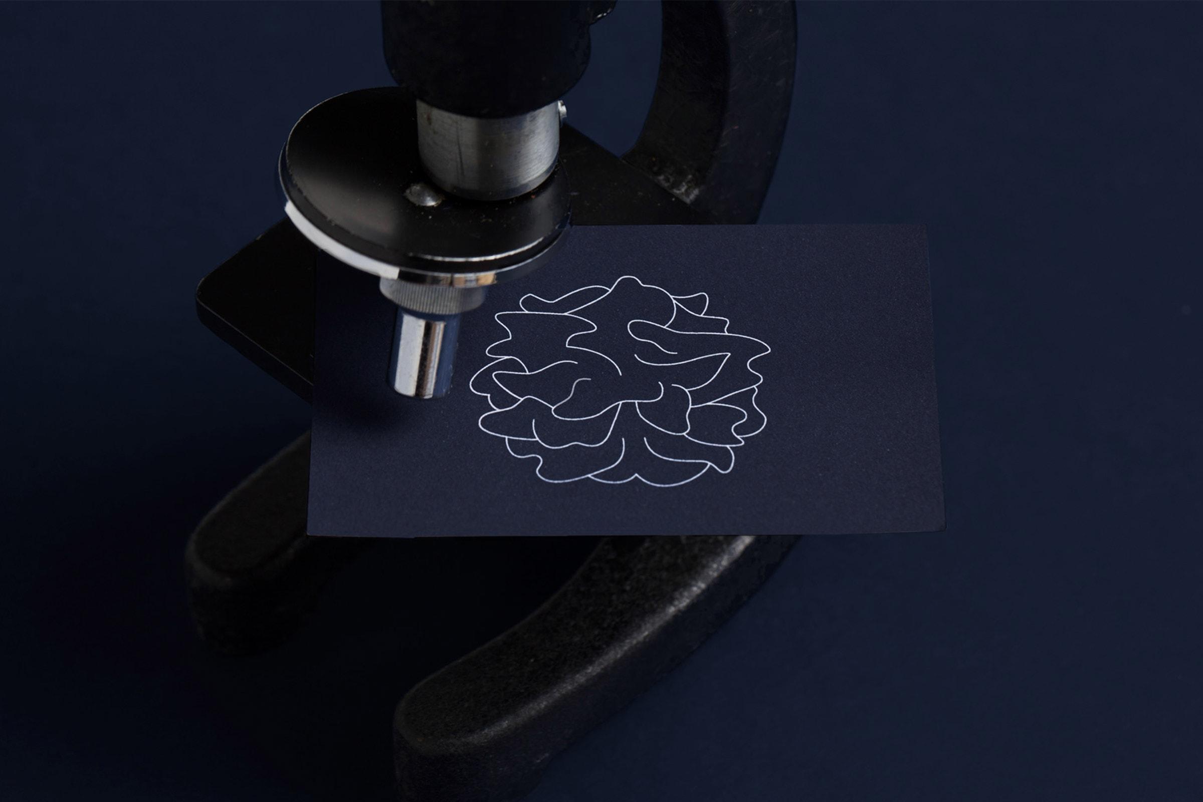 corporate design, transimmune, dendritische zelle, logo